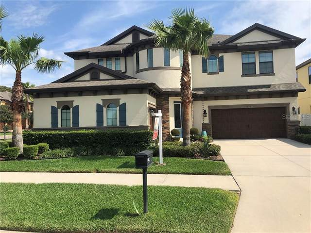 10827 Charmwood Drive, Riverview, FL 33569 (MLS #T3231060) :: The Duncan Duo Team