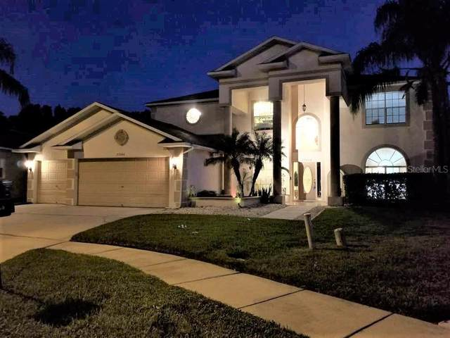 27000 Sea Breeze Way, Wesley Chapel, FL 33544 (MLS #T3231170) :: Zarghami Group