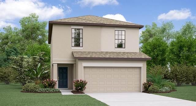 7306 Samuel Ivy Drive, Tampa, FL 33619 (MLS #T3231286) :: Burwell Real Estate
