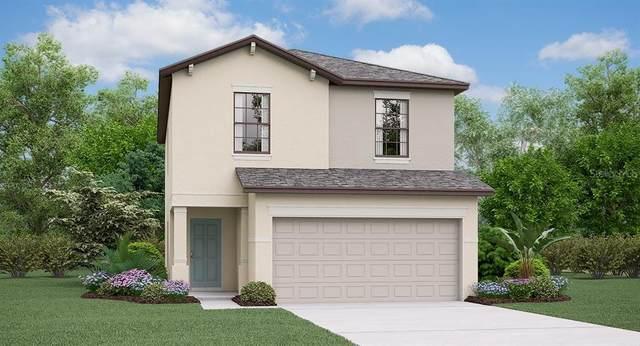 7302 Samuel Ivy Drive, Tampa, FL 33619 (MLS #T3231287) :: Burwell Real Estate
