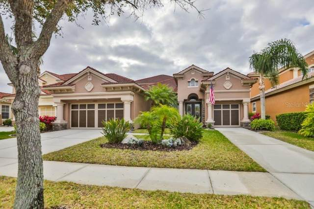11608 Bristol Chase Drive, Tampa, FL 33626 (MLS #T3231379) :: Griffin Group