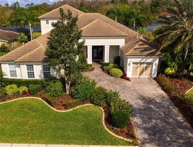11709 Glen Wessex Court, Tampa, FL 33626 (MLS #T3231473) :: Griffin Group