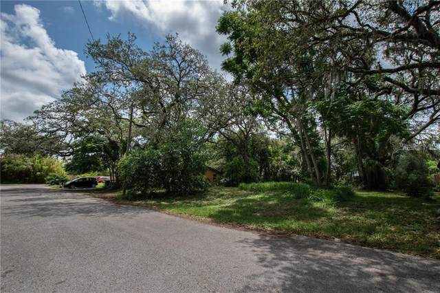Anay Court, New Port Richey, FL 34653 (MLS #T3231508) :: Bustamante Real Estate