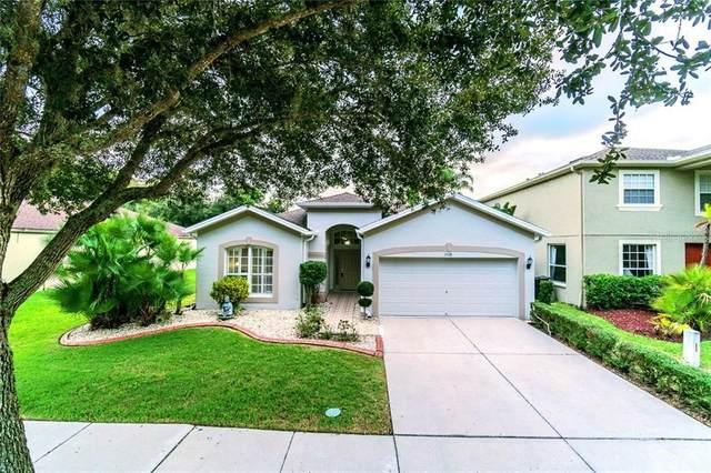 19126 Meadow Pine Drive, Tampa, FL 33647 (MLS #T3231517) :: Team Bohannon Keller Williams, Tampa Properties