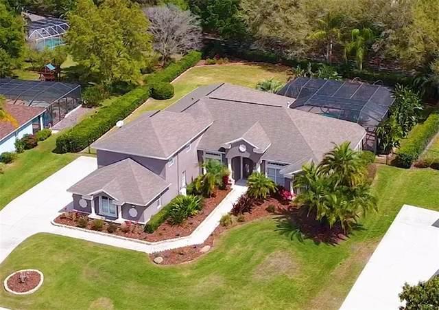 6046 Audubon Manor Boulevard, Lithia, FL 33547 (MLS #T3231839) :: The Brenda Wade Team