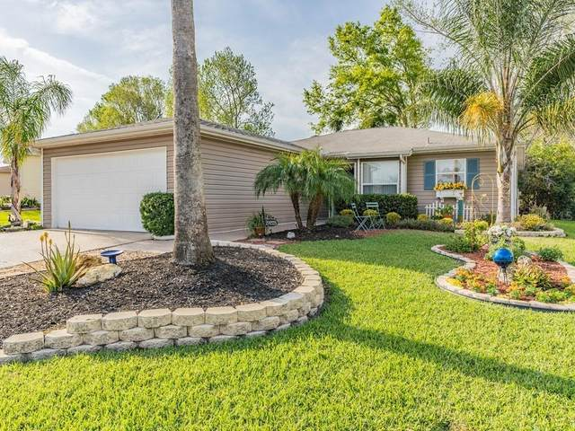29225 Princeville Drive, San Antonio, FL 33576 (MLS #T3231856) :: Delgado Home Team at Keller Williams