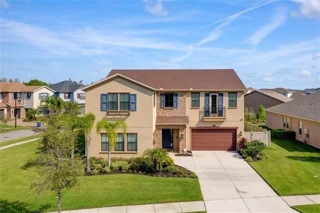 28635 Tavira Court, Wesley Chapel, FL 33543 (MLS #T3232066) :: Team Bohannon Keller Williams, Tampa Properties