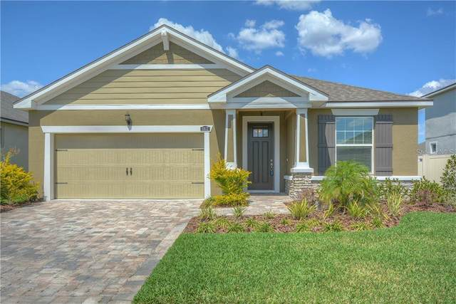 11612 Blue Woods Drive, Riverview, FL 33569 (MLS #T3232074) :: Griffin Group