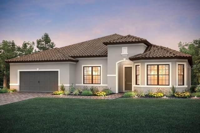 7969 Grande Shores Drive, Sarasota, FL 34240 (MLS #T3232273) :: The Paxton Group
