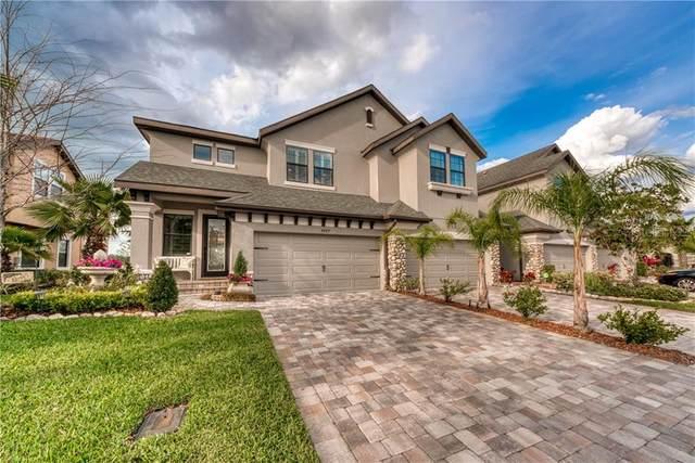 4689 Wandering Way, Wesley Chapel, FL 33544 (MLS #T3232466) :: Team Bohannon Keller Williams, Tampa Properties