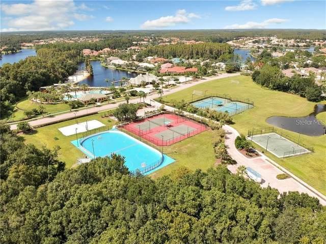 10552 Cory Lake Drive, Tampa, FL 33647 (MLS #T3232552) :: Team Bohannon Keller Williams, Tampa Properties