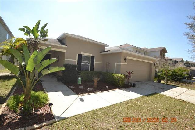 13515 Blue Sunfish Court, Riverview, FL 33569 (MLS #T3232614) :: Team Borham at Keller Williams Realty