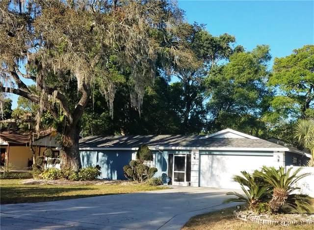 10322 N 53RD Street, Temple Terrace, FL 33617 (MLS #T3232615) :: Griffin Group