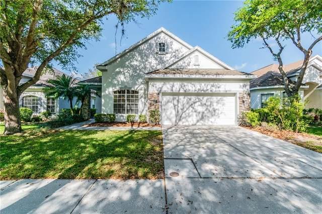 17814 Sandpine Trace Way, Tampa, FL 33647 (MLS #T3232714) :: Team Bohannon Keller Williams, Tampa Properties