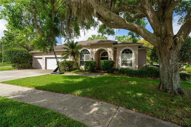 17102 Tiffany Lake Place, Lutz, FL 33549 (MLS #T3232726) :: Team Bohannon Keller Williams, Tampa Properties