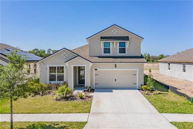 11507 Blue Woods Drive, Riverview, FL 33569 (MLS #T3232747) :: Team Borham at Keller Williams Realty