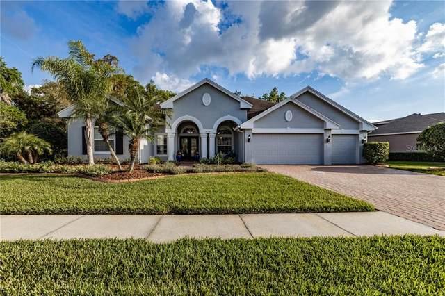 27538 Pine Point Drive, Wesley Chapel, FL 33544 (MLS #T3232805) :: Team Bohannon Keller Williams, Tampa Properties