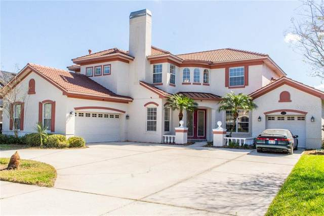 16251 Ivy Lake Drive, Odessa, FL 33556 (MLS #T3232875) :: Team Bohannon Keller Williams, Tampa Properties