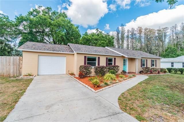 19208 Blount Road, Lutz, FL 33558 (MLS #T3232876) :: Kendrick Realty Inc