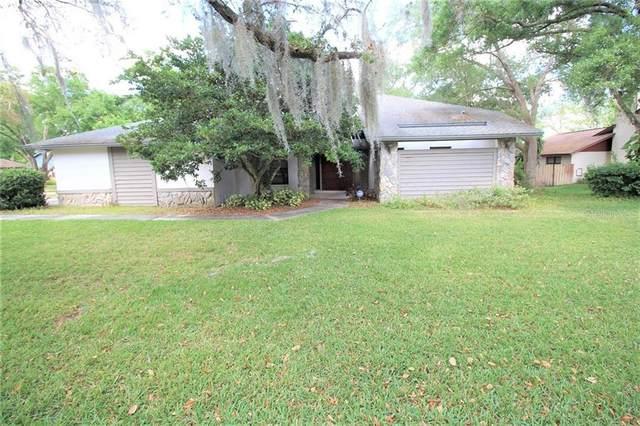 6302 Jacqueline Arbor Drive, Temple Terrace, FL 33617 (MLS #T3233065) :: Griffin Group