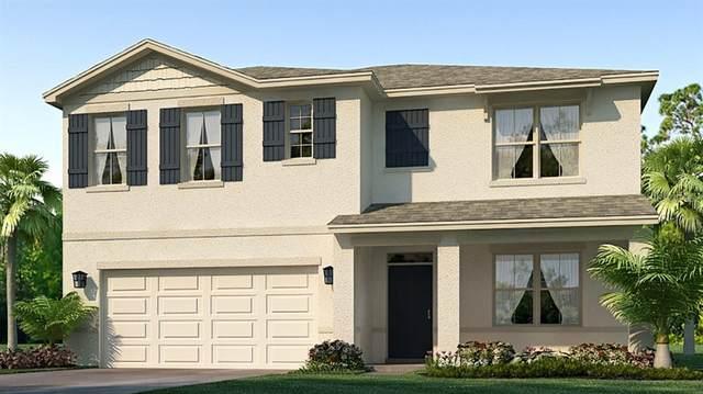 2815 Greenleaf Terrace, Parrish, FL 34219 (MLS #T3233081) :: Pristine Properties