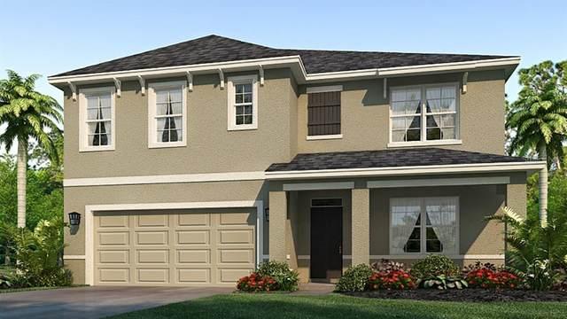 2820 Greenleaf Terrace, Parrish, FL 34219 (MLS #T3233083) :: Pristine Properties