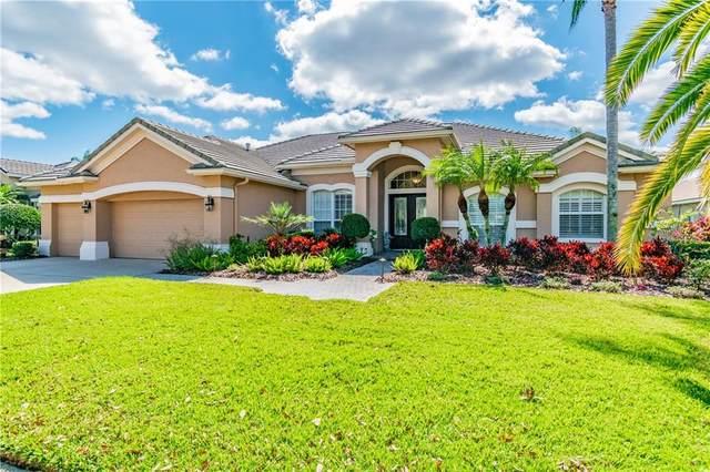 4614 Avenue Longchamps, Lutz, FL 33558 (MLS #T3233136) :: Kendrick Realty Inc