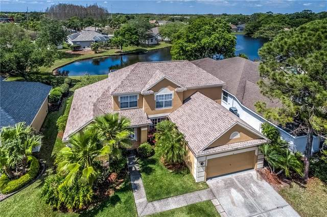 12808 Birmingham Street, Tampa, FL 33625 (MLS #T3233149) :: Team Bohannon Keller Williams, Tampa Properties