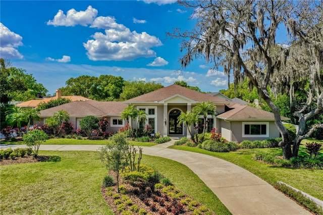 16504 Villespin De Avila, Tampa, FL 33613 (MLS #T3233237) :: Team Bohannon Keller Williams, Tampa Properties