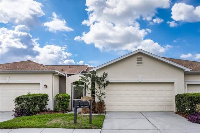 20838 Jaffa Lane, Land O Lakes, FL 34637 (MLS #T3233263) :: Premier Home Experts