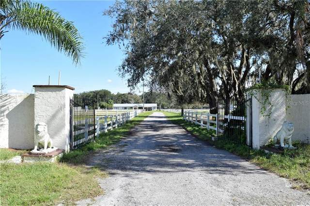 19131 Huckavalle Road, Odessa, FL 33556 (MLS #T3233288) :: EXIT King Realty