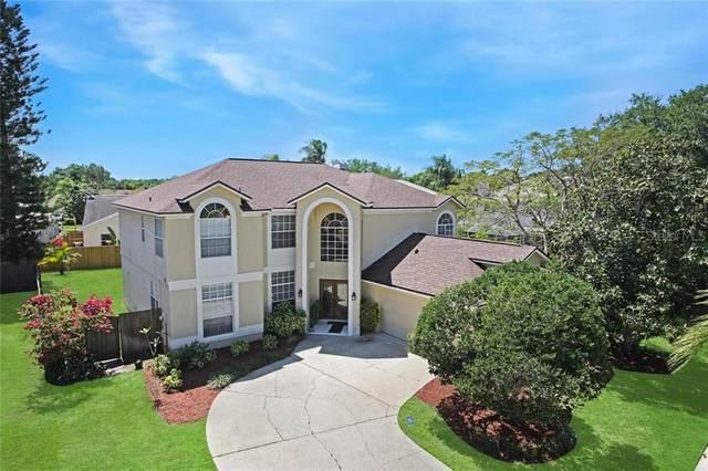 11313 Bloomington Drive, Tampa, FL 33635 (MLS #T3233293) :: Premium Properties Real Estate Services