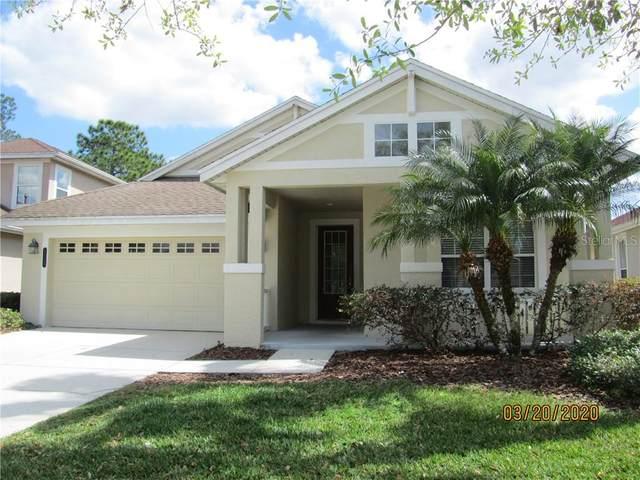 8115 Camella Lane, Tampa, FL 33647 (MLS #T3233307) :: Team Bohannon Keller Williams, Tampa Properties
