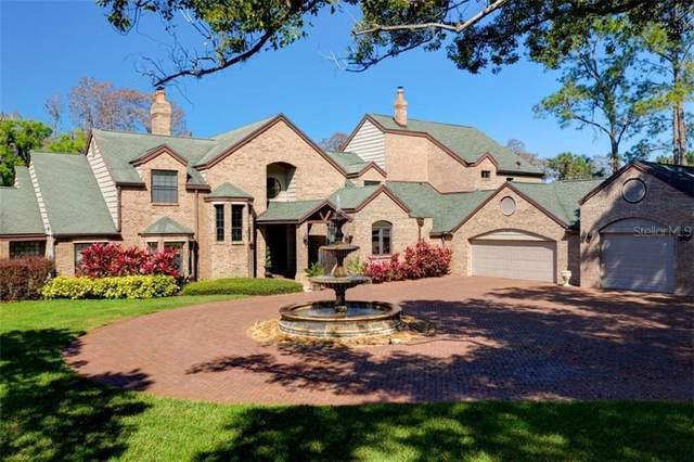 18304 Wayne Road, Odessa, FL 33556 (MLS #T3233310) :: Team Bohannon Keller Williams, Tampa Properties