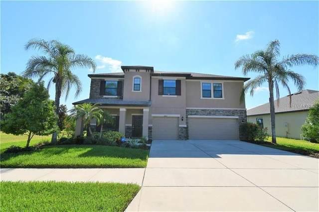 2823 Shetland Ridge Drive, Valrico, FL 33596 (MLS #T3233440) :: The Robertson Real Estate Group