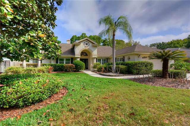 16814 Blenheim Drive, Lutz, FL 33549 (MLS #T3233509) :: Team Bohannon Keller Williams, Tampa Properties