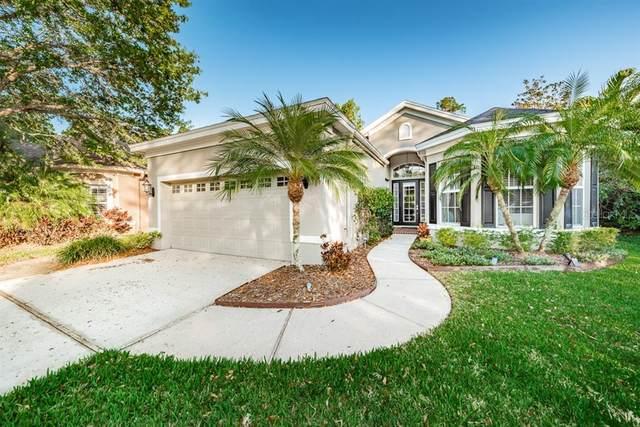 10409 Applecross Lane, Tampa, FL 33626 (MLS #T3233512) :: Griffin Group