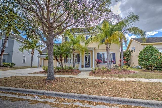538 Islebay Drive, Apollo Beach, FL 33572 (MLS #T3233558) :: Premium Properties Real Estate Services