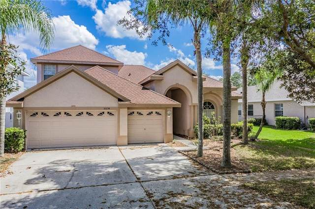 10234 Deercliff Drive, Tampa, FL 33647 (MLS #T3233599) :: Team Bohannon Keller Williams, Tampa Properties