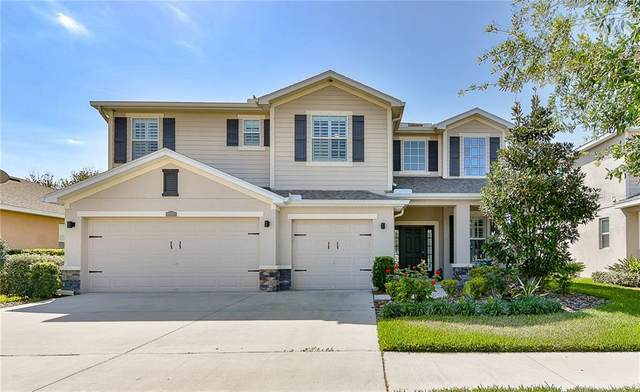 12327 Fairlawn Drive, Riverview, FL 33579 (MLS #T3233611) :: Lovitch Group, Keller Williams Realty South Shore