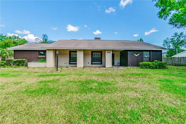 13605 Westshire Drive, Tampa, FL 33618 (MLS #T3233675) :: Team Bohannon Keller Williams, Tampa Properties
