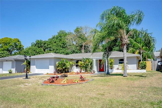 2036 Scotland Drive, Clearwater, FL 33763 (MLS #T3233689) :: Mark and Joni Coulter | Better Homes and Gardens