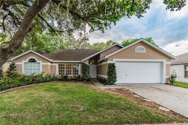 1306 Gangplank Drive, Valrico, FL 33594 (MLS #T3233709) :: Dalton Wade Real Estate Group