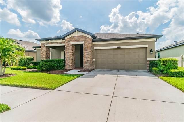 21752 Southern Charm Drive, Land O Lakes, FL 34637 (MLS #T3233711) :: Cartwright Realty