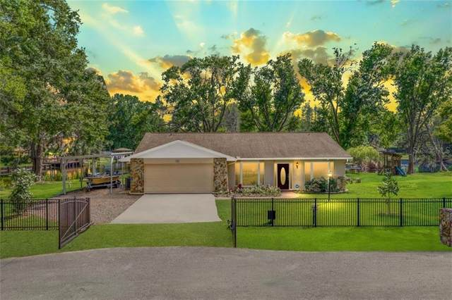 17023 Dennis Road, Lutz, FL 33558 (MLS #T3233712) :: Premium Properties Real Estate Services