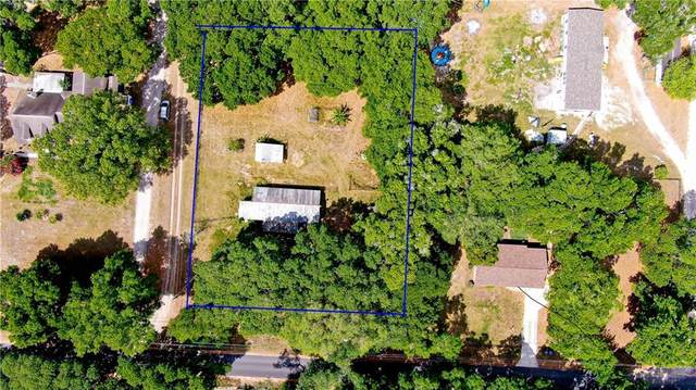 1210 Pelote Cemetery Road, Lithia, FL 33547 (MLS #T3233760) :: EXIT King Realty