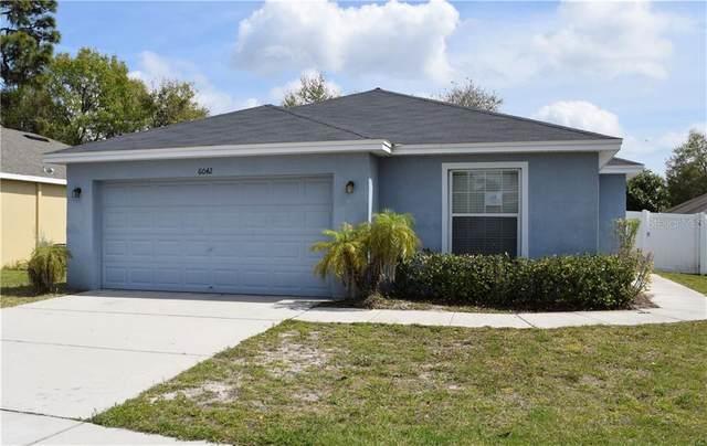 6042 Merrifield Drive, Zephyrhills, FL 33541 (MLS #T3233766) :: GO Realty