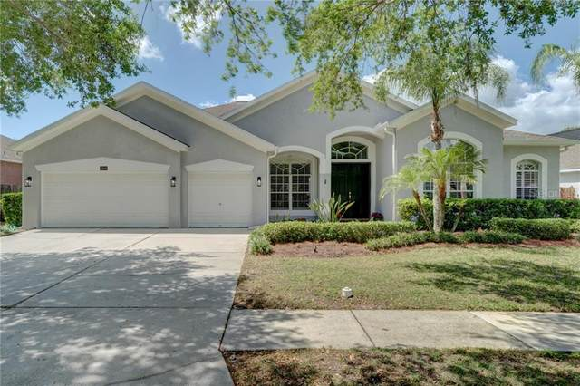 15839 Berea Drive, Odessa, FL 33556 (MLS #T3233801) :: Team Bohannon Keller Williams, Tampa Properties