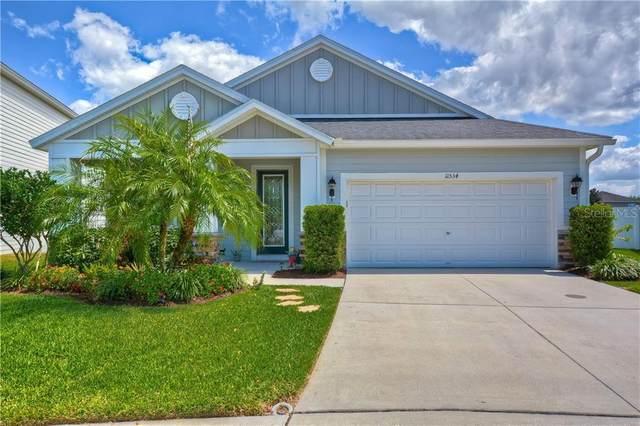 11534 Balintore Drive, Riverview, FL 33579 (MLS #T3233859) :: Zarghami Group
