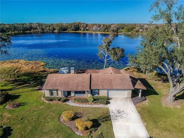 8215 Cosme Road, Odessa, FL 33556 (MLS #T3233904) :: Team Bohannon Keller Williams, Tampa Properties